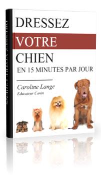 Dresser son chien en 15 minutes par jour