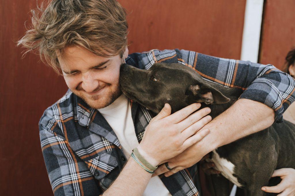 dresser son chien en 15 min par jour